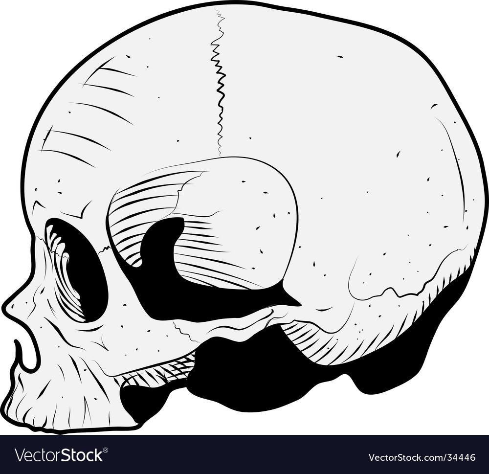 Skull illustration vector | Price: 1 Credit (USD $1)