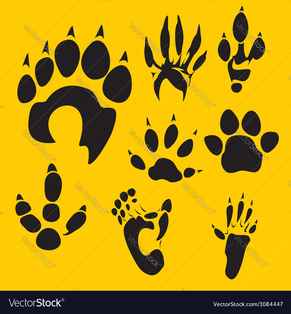 Footprints set - vinyl-ready vector | Price: 1 Credit (USD $1)