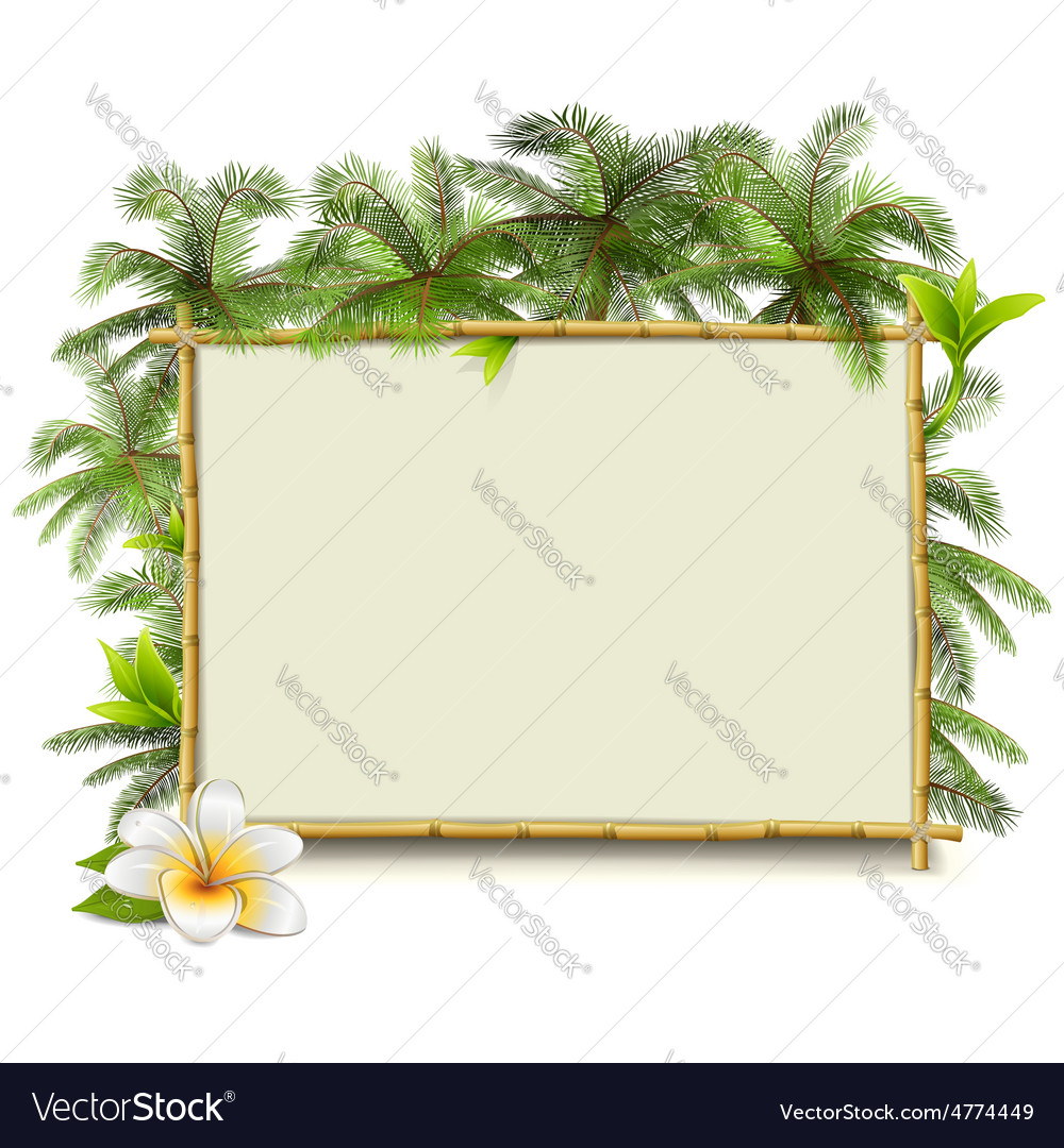 Bamboo frame with palm vector   Price: 5 Credit (USD $5)