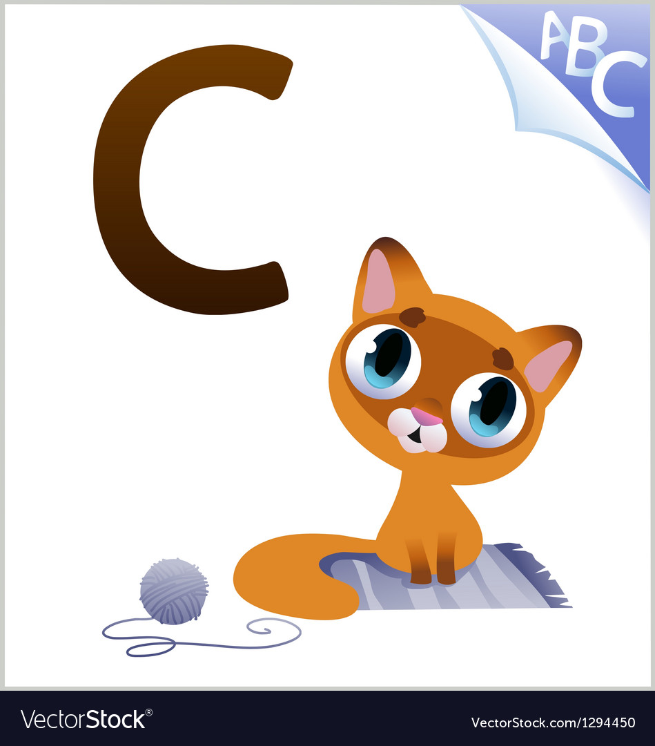 Animal alphabet for the kids c for the cat vector | Price: 1 Credit (USD $1)