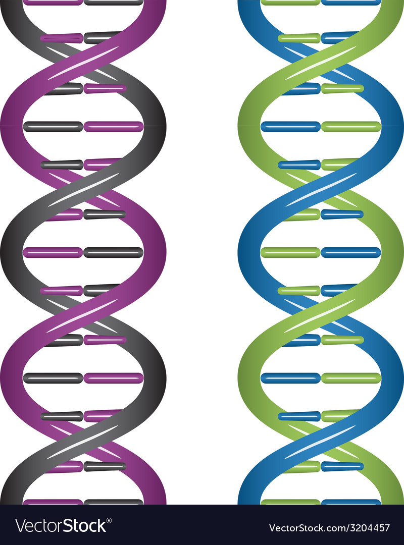 Seamless dna vector | Price: 1 Credit (USD $1)