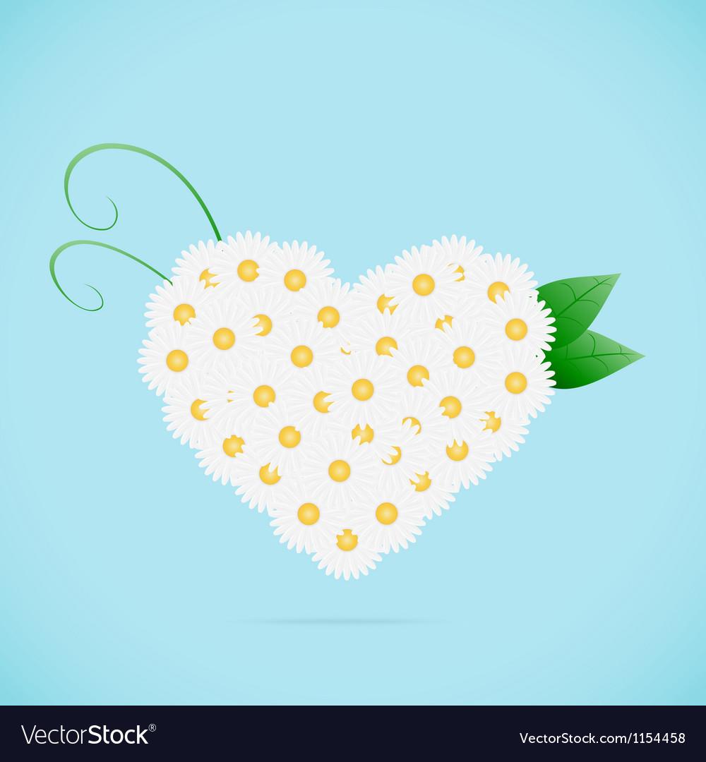 Chamomile heart vector | Price: 1 Credit (USD $1)