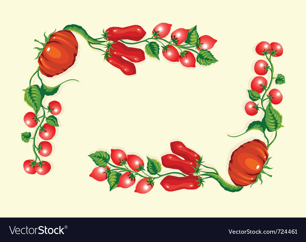 Stylized tomatoes corner frame vector | Price: 1 Credit (USD $1)
