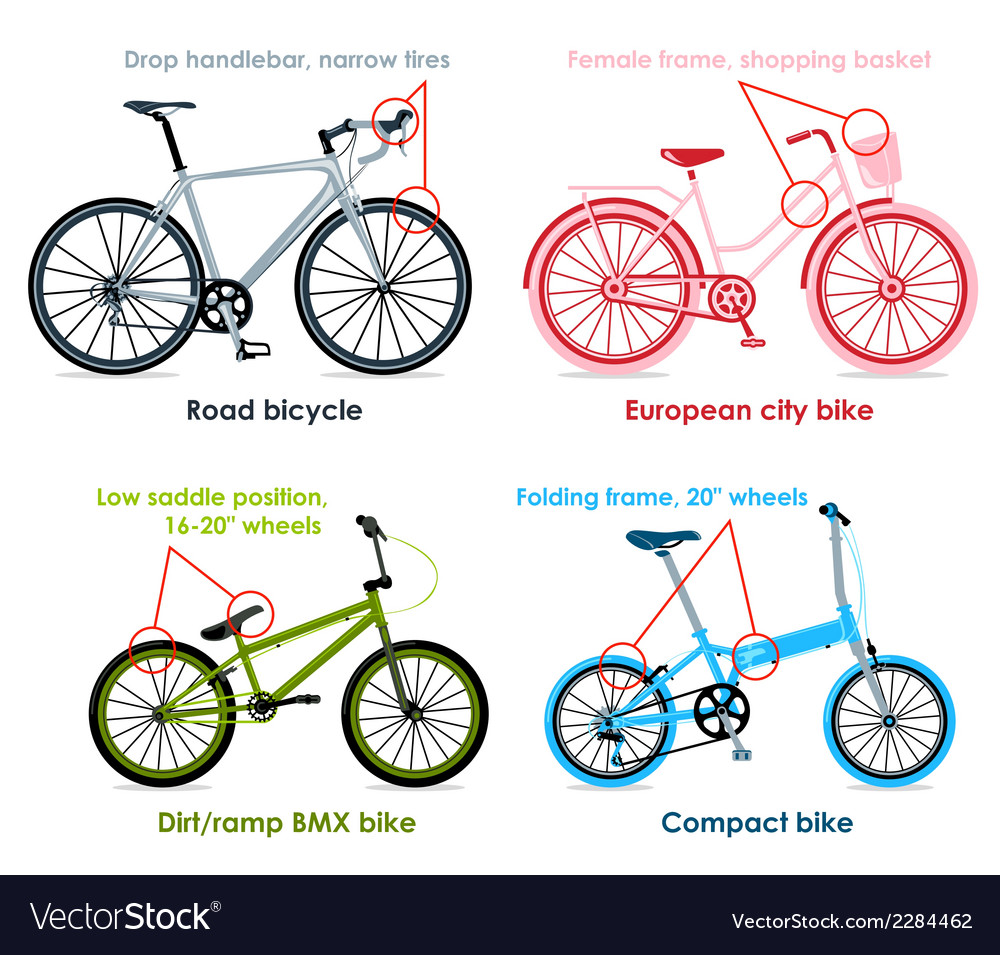 Bicycle types set i vector | Price: 1 Credit (USD $1)