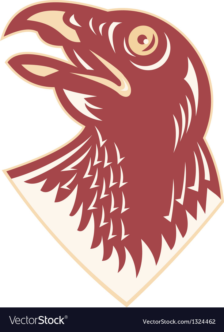 Hawk falcon bird head vector | Price: 1 Credit (USD $1)