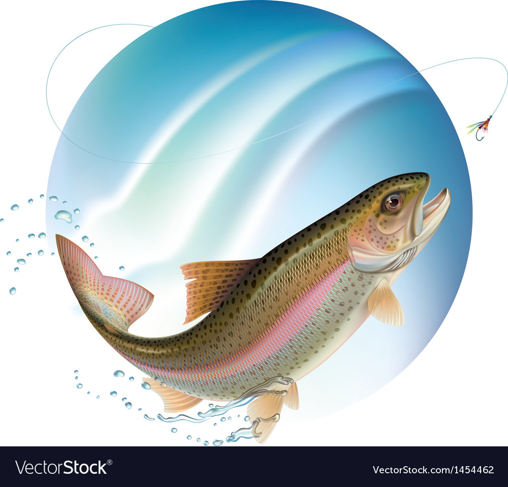 Jumping trout vector | Price: 1 Credit (USD $1)