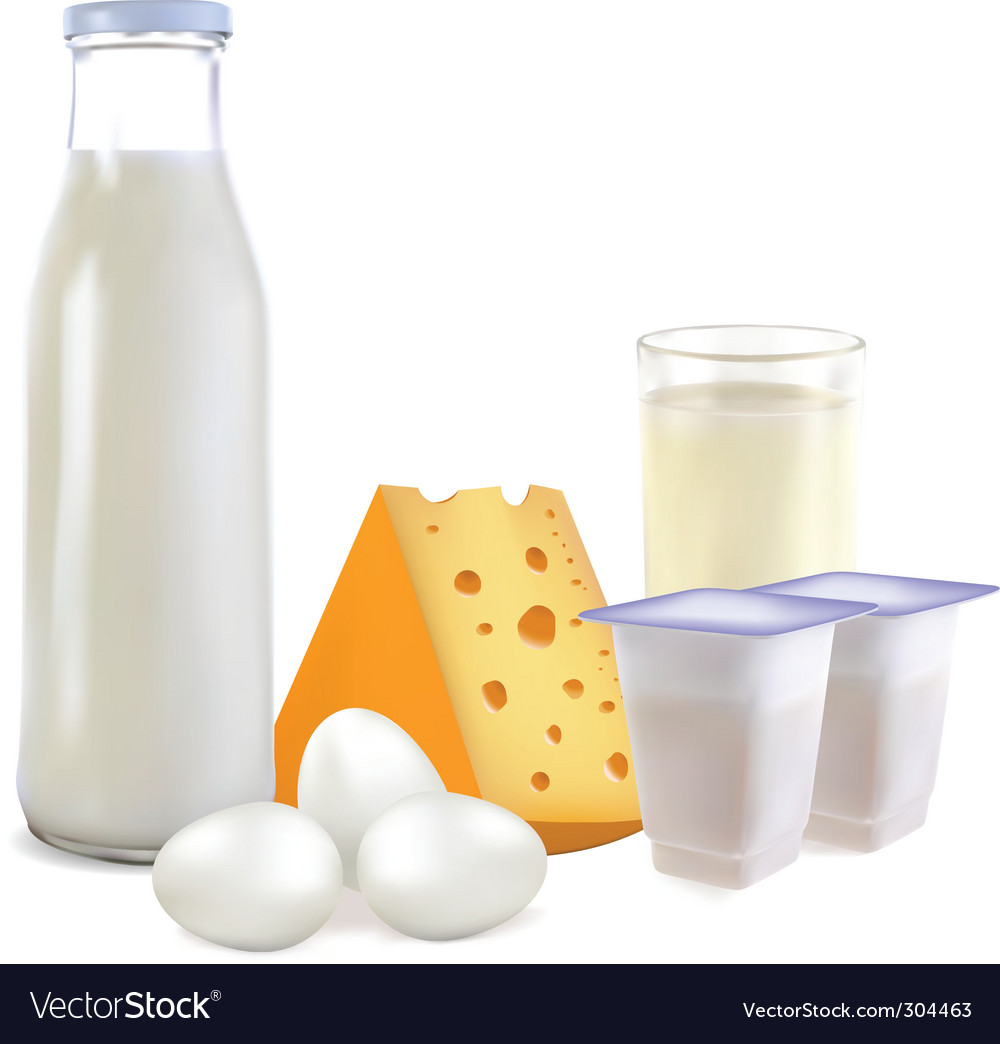 Dairy products and eggs vector