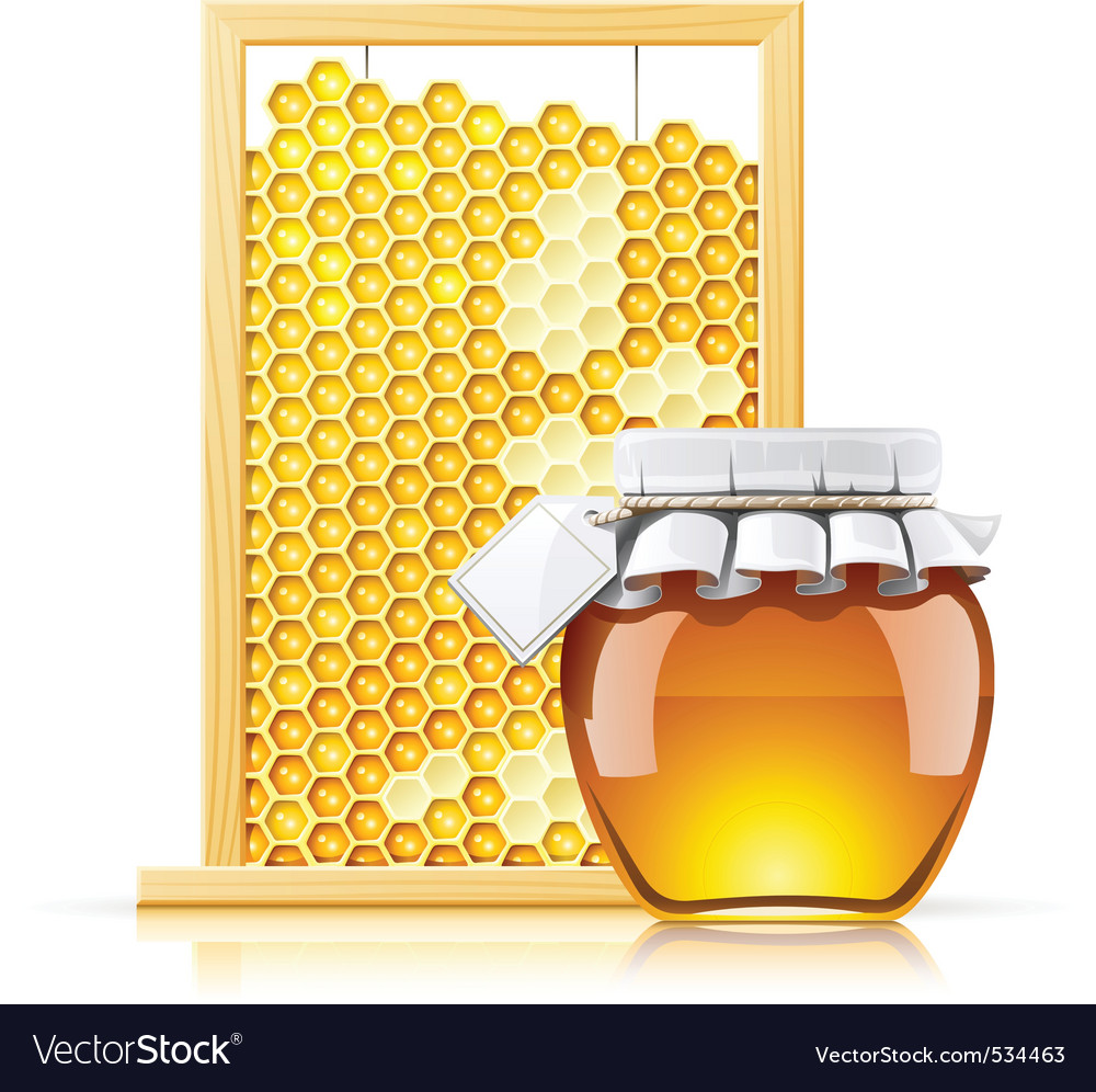 Jar with honey and honeycomb vector | Price: 3 Credit (USD $3)