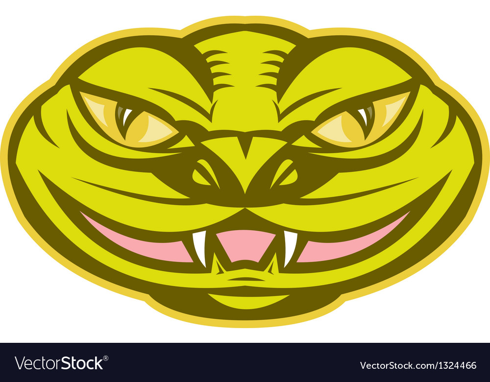 Viper snake serpent head vector | Price: 1 Credit (USD $1)