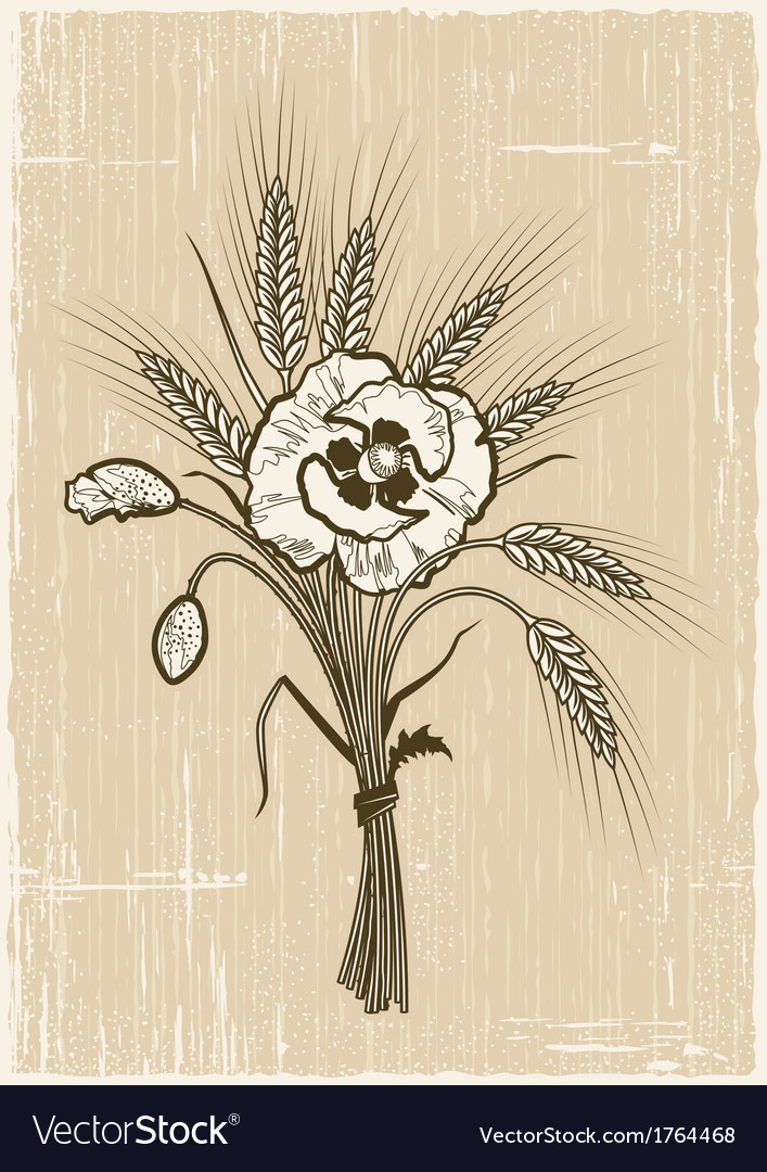 Retro wheat and poppies bouquet vector | Price: 1 Credit (USD $1)