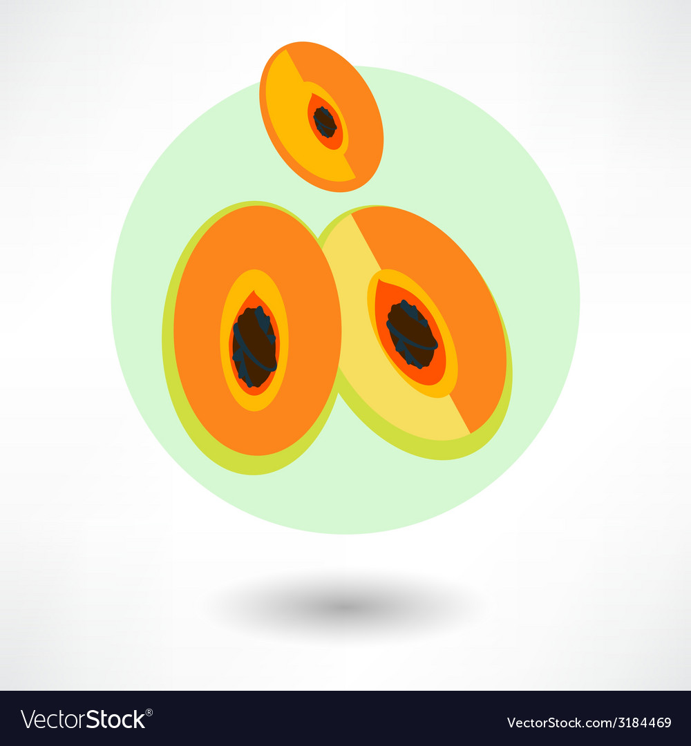 Cartoon papaya vector | Price: 1 Credit (USD $1)