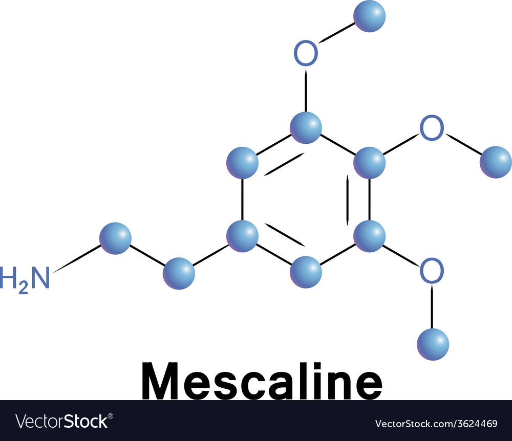 Mescaline vector | Price: 1 Credit (USD $1)