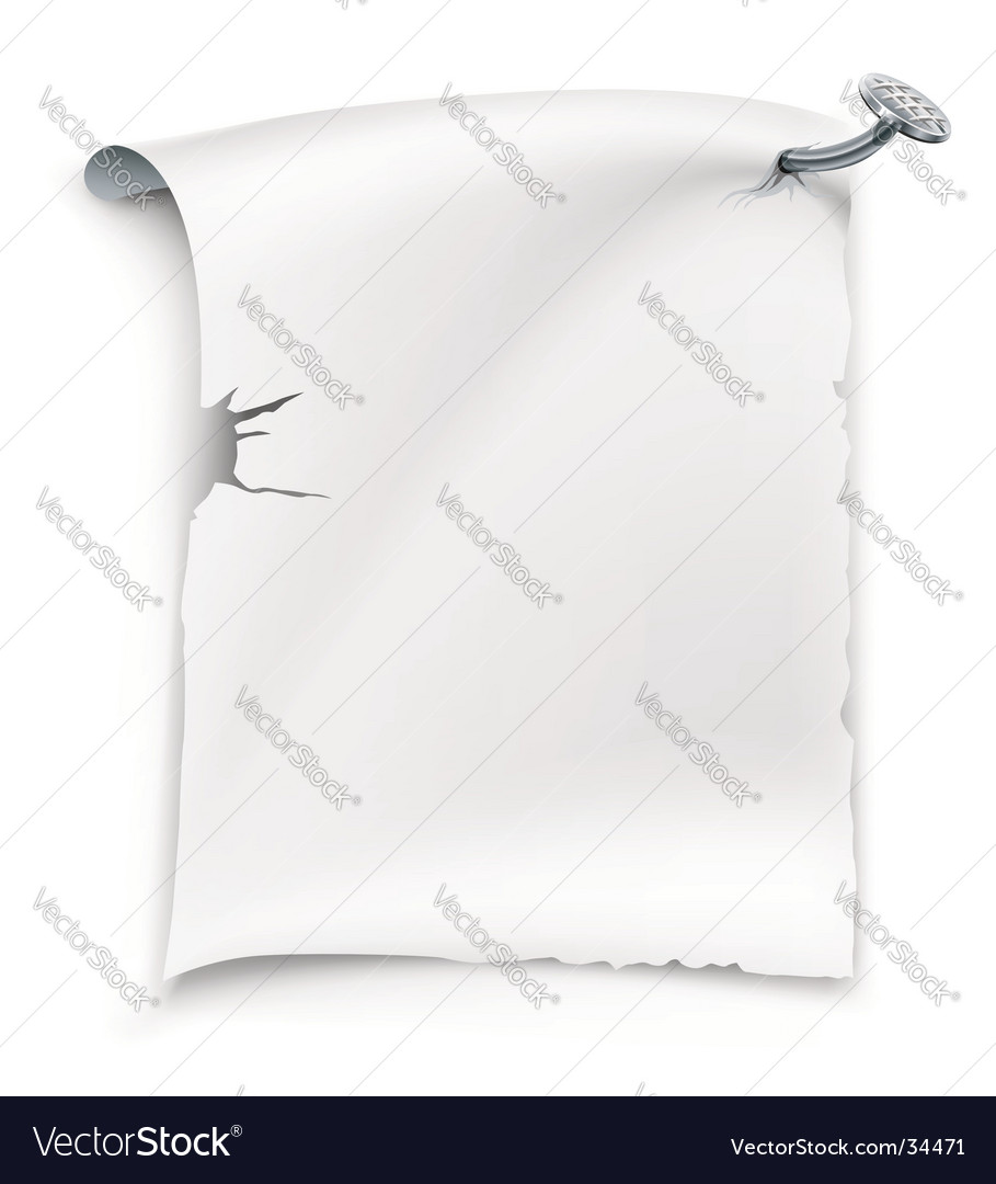 Blank paper sheet vector   Price: 1 Credit (USD $1)