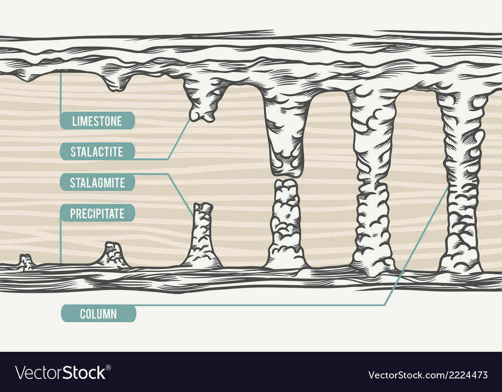 Stalactite stalagmite colum vector | Price: 1 Credit (USD $1)