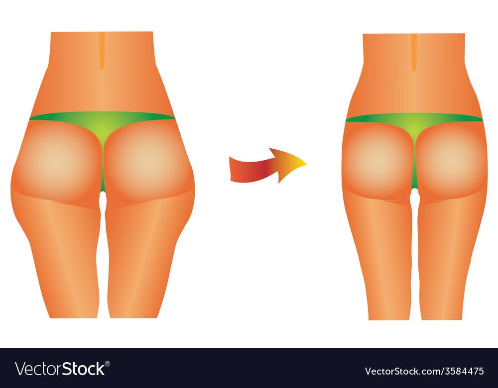 Female buttocks vector | Price: 1 Credit (USD $1)
