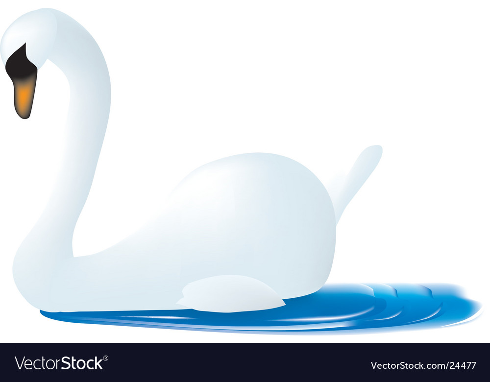 A swan vector | Price:  Credit (USD $)