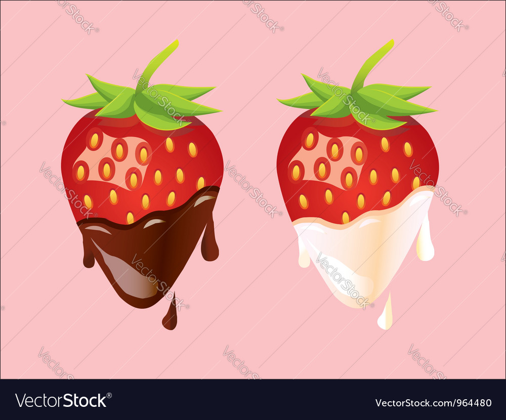 Two strawberries - cream and chocolate vector | Price: 1 Credit (USD $1)