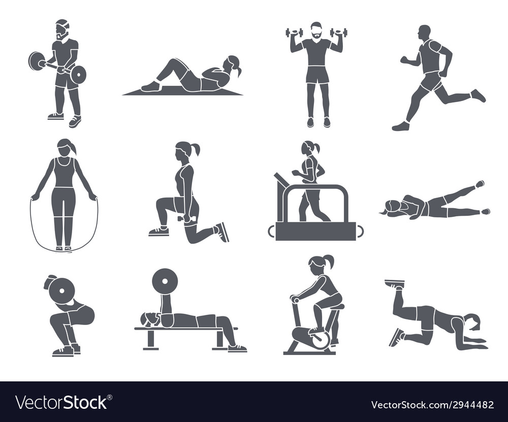 Gym sport exercises icons vector | Price: 1 Credit (USD $1)
