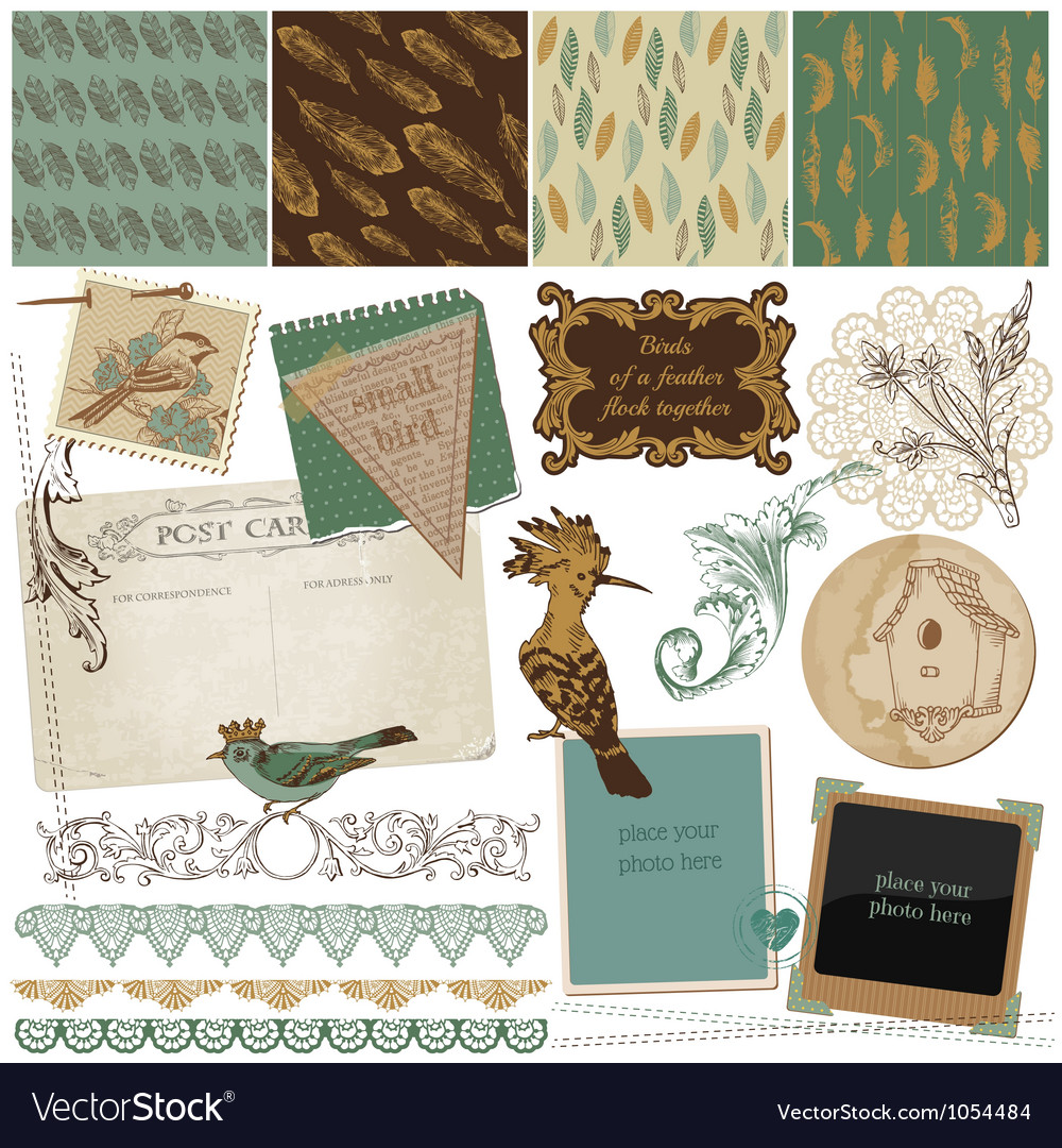 Design elements - vintage bird feathers vector | Price: 1 Credit (USD $1)