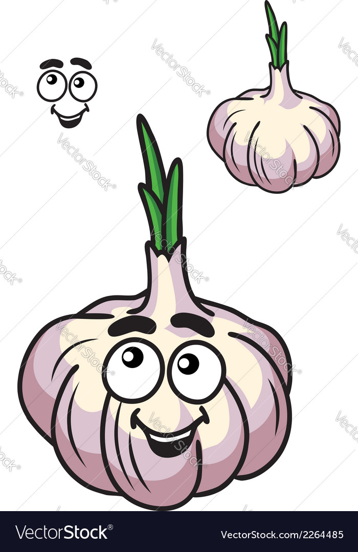 Healthy fresh garlic vegetable vector | Price: 1 Credit (USD $1)