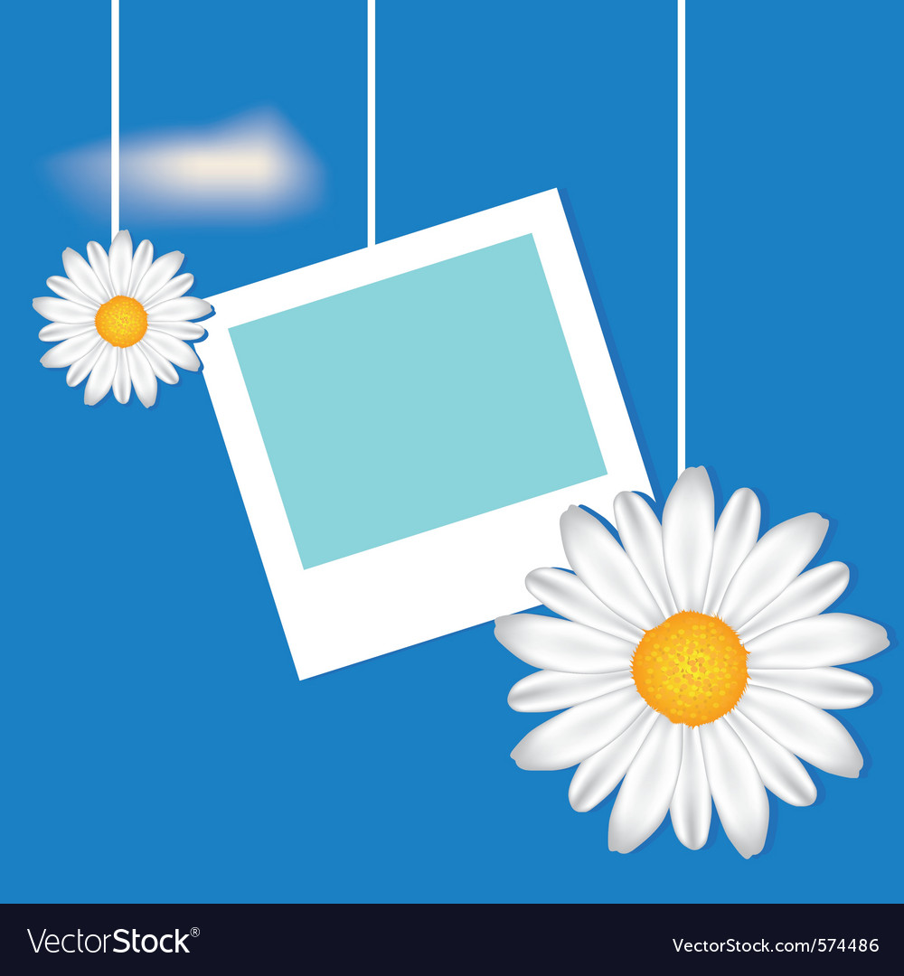 Card with frame and camomile vector | Price: 1 Credit (USD $1)