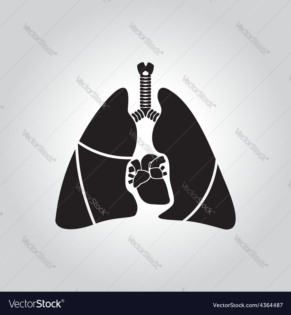 Heart lung symbol vector | Price: 1 Credit (USD $1)