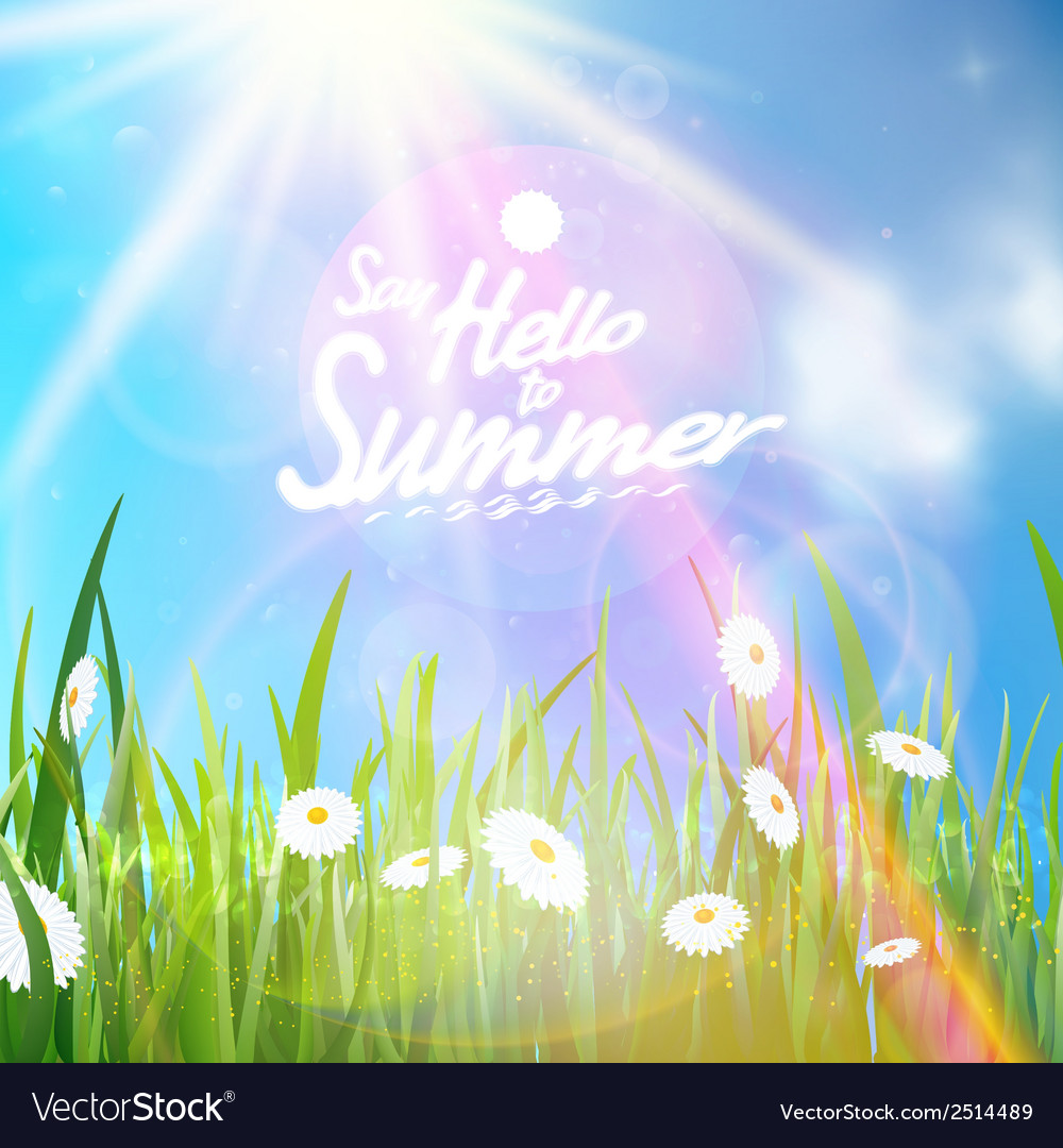 Sunny natural background with sun and grass vector | Price: 1 Credit (USD $1)