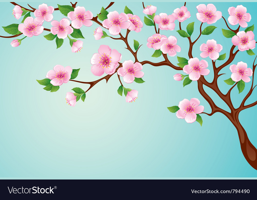 Blossoms tree vector | Price: 1 Credit (USD $1)