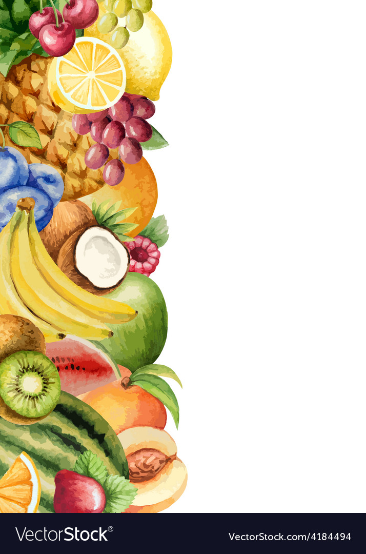 Watercolour fruit banner for your design vector | Price: 1 Credit (USD $1)