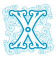 Winter vintage letter x vector