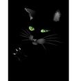 Black cat face vector