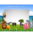 Funny animal cartoon collection with blank sign an vector