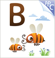 Animal alphabet for the kids b for the bee vector