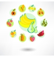 A set of fruit icons vector