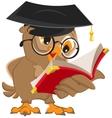 Owl reading a book vector