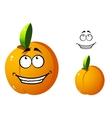 Cute orange apricot cartoon character vector
