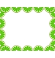 Lime frame vector