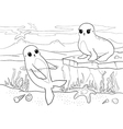 Seals - coloring book - vector