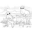 Seals - coloring book - vector