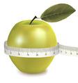 Green apple measured the meter vector