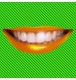 Beautiful smiling vector