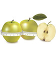 Green apple measured the meter vector