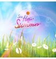 Sunny natural background with sun and grass vector