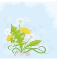 Flowers dandelions vector