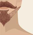 Bearded mans face vector