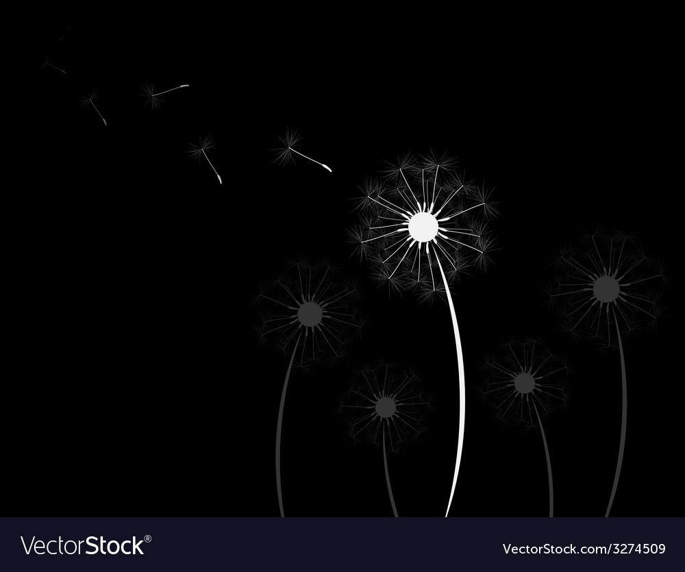 Background dandelion fluff vector | Price: 1 Credit (USD $1)