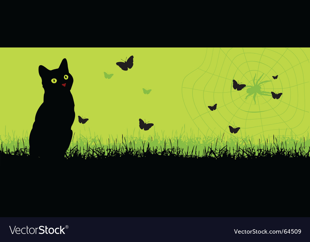 Cat and a spiderweb vector | Price: 1 Credit (USD $1)