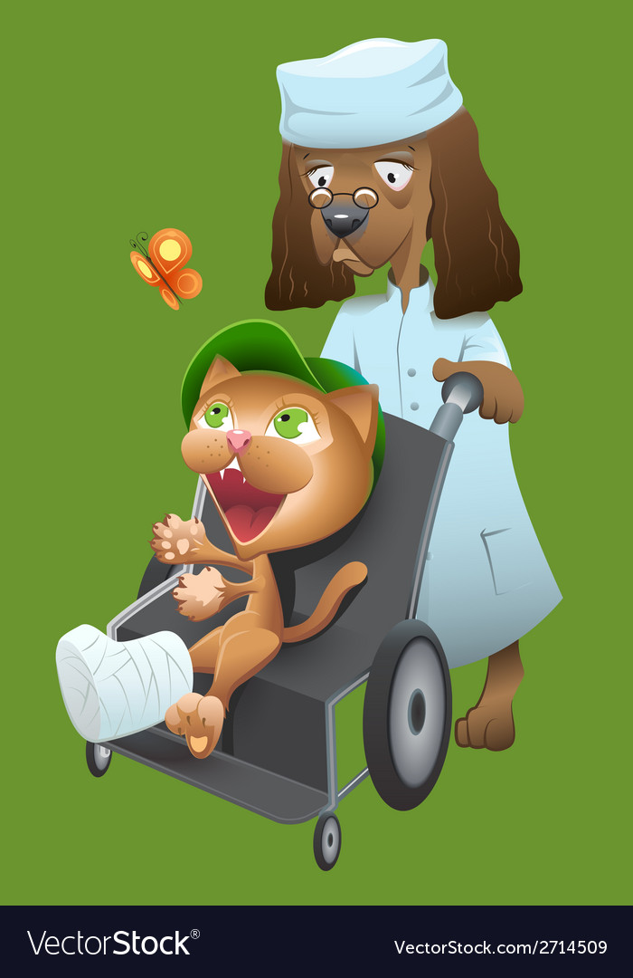 Dog veterinarian carries a cat in a wheelchair vector | Price: 1 Credit (USD $1)
