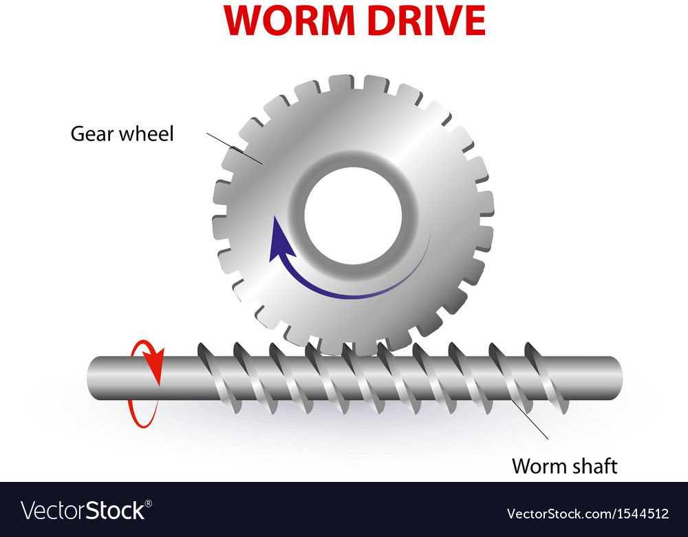Worm drive vector | Price: 1 Credit (USD $1)