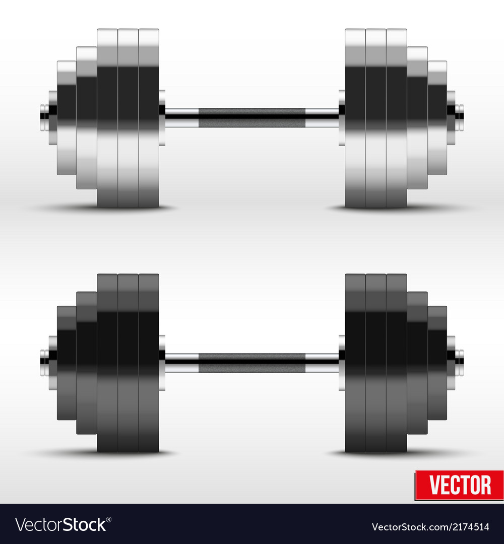 Black and silver classic power dumbbells vector | Price: 1 Credit (USD $1)